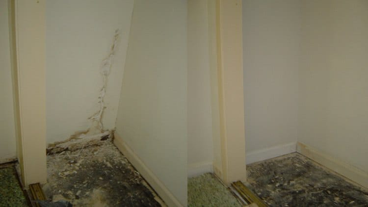 before and after images of termite damaged drywall