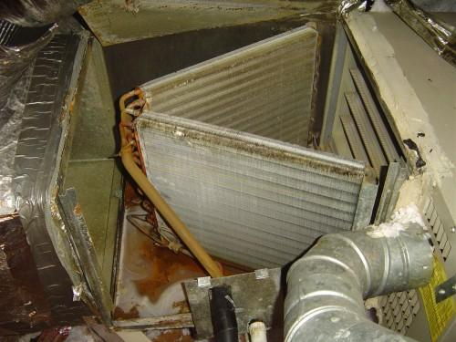 evaporator coils in compartment